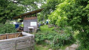 """ja, wer hat der Hütte ein """"neues Dach"""" verpasst? Das war Michael S. der """"uns"""" mit seinem handwerkliches Geschick erfreut und uns immer wieder überrascht."""